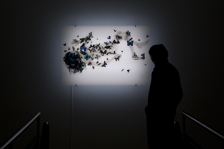 Maison des Arts, Malakoff, 2009