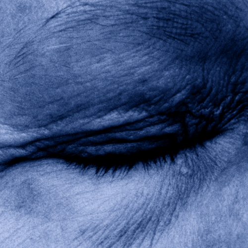 13_memory_4, pièce unique 29 x 29 cm, impression photographique sous Diasec 3mm