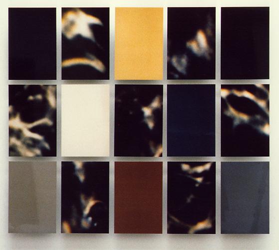 EXPRTT1, 30 x 45cm /x15, format total 141 x 162 cm,  tirages photographiques Cibachrome sur alucubond