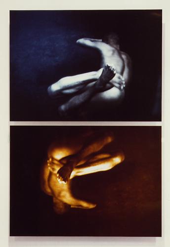 EXPRTT6, 50 X 70cm /x2, format total 70 x 105 cm, tirages photographiques Cibachrome sur alucubond