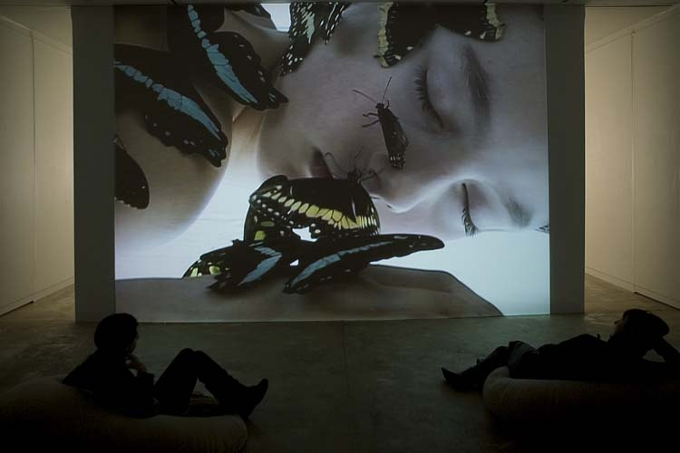 Dispositif vidéo, Maison des Arts de Malakoff, 2009
