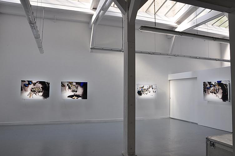 Galerie Esther Woerdehoff Paris, 2010
