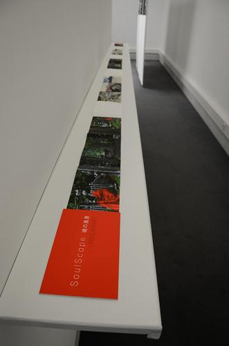 SoulScape, livre d'artste, leporello 680 cm x 12 cm, deplié, exposition