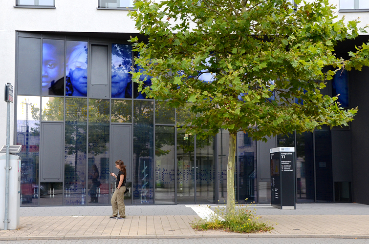 Intervention sur la totalité de la façade vitrée / Intervention auf die gesamte Glasfassade